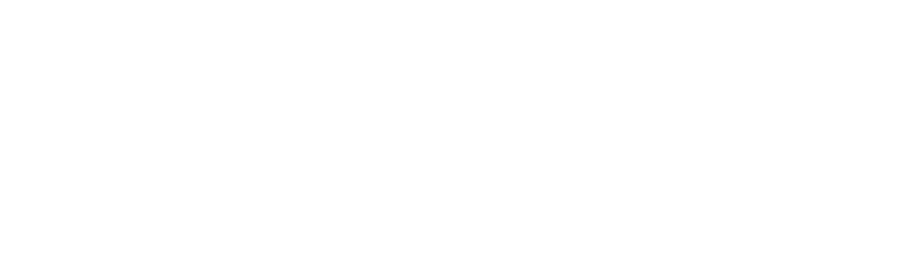 Fenice Beauty Academy